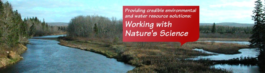 Providing credible water resource solutions: Working with Nature's Science